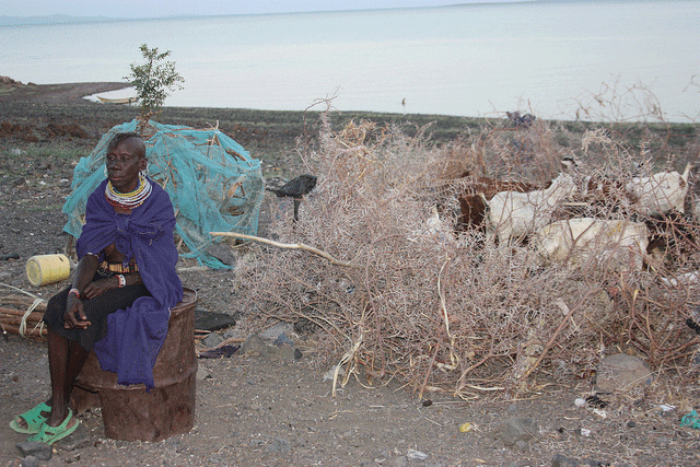 In the Turkana culture, owning livestock is a sign of wealth. Photo: EC/ECHO/Malini Morzaria