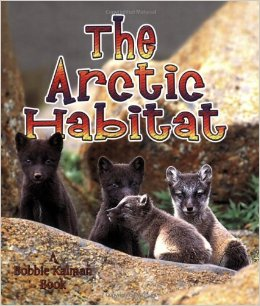 The-Arctic-Habitat