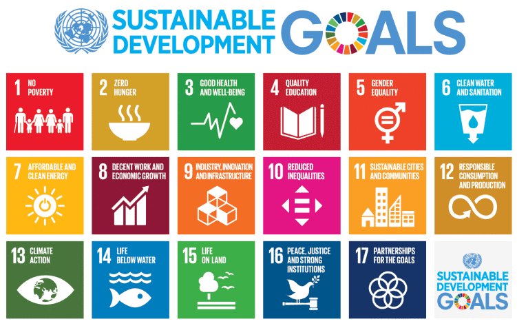 Sustainable development goals of the United Nations. https://www.un.org/sustainabledevelopment/blog/2015/12/sustainable-development-goals-kick-off-with-start-of-new-year/
