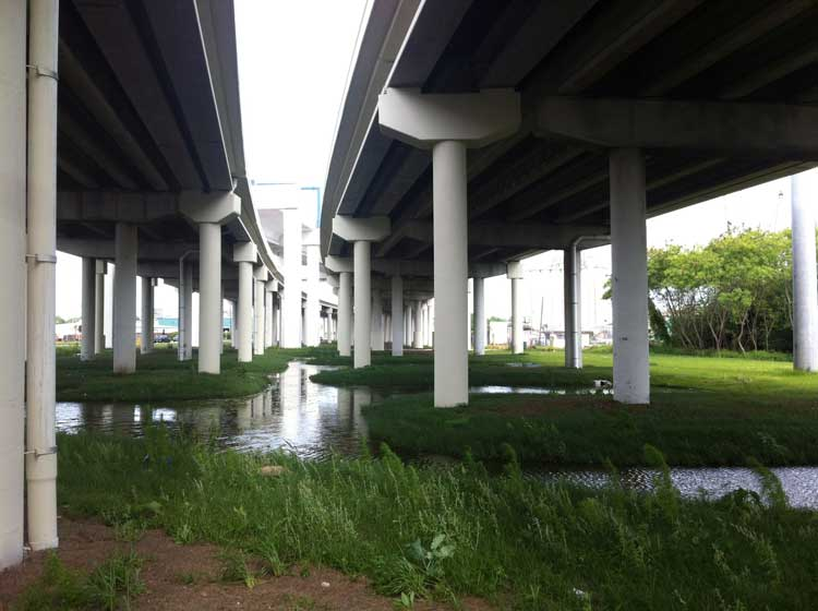 The citing of freeways such as this one in Florid with minimal environmental impact, is one of the many benefits derived from applied geography. Photo used with permission, J. Kerski.