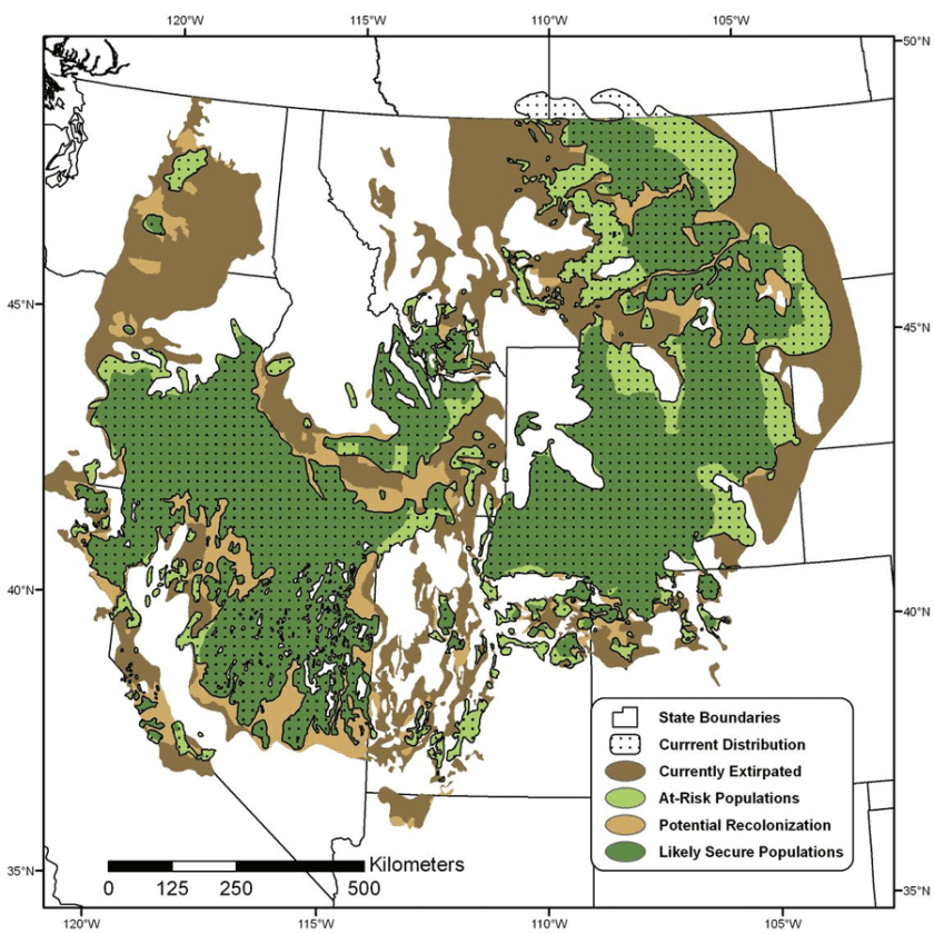 Geographers use GIS to predict greater sage-grouse distribution in the American West.  Map: USGS, public domain.