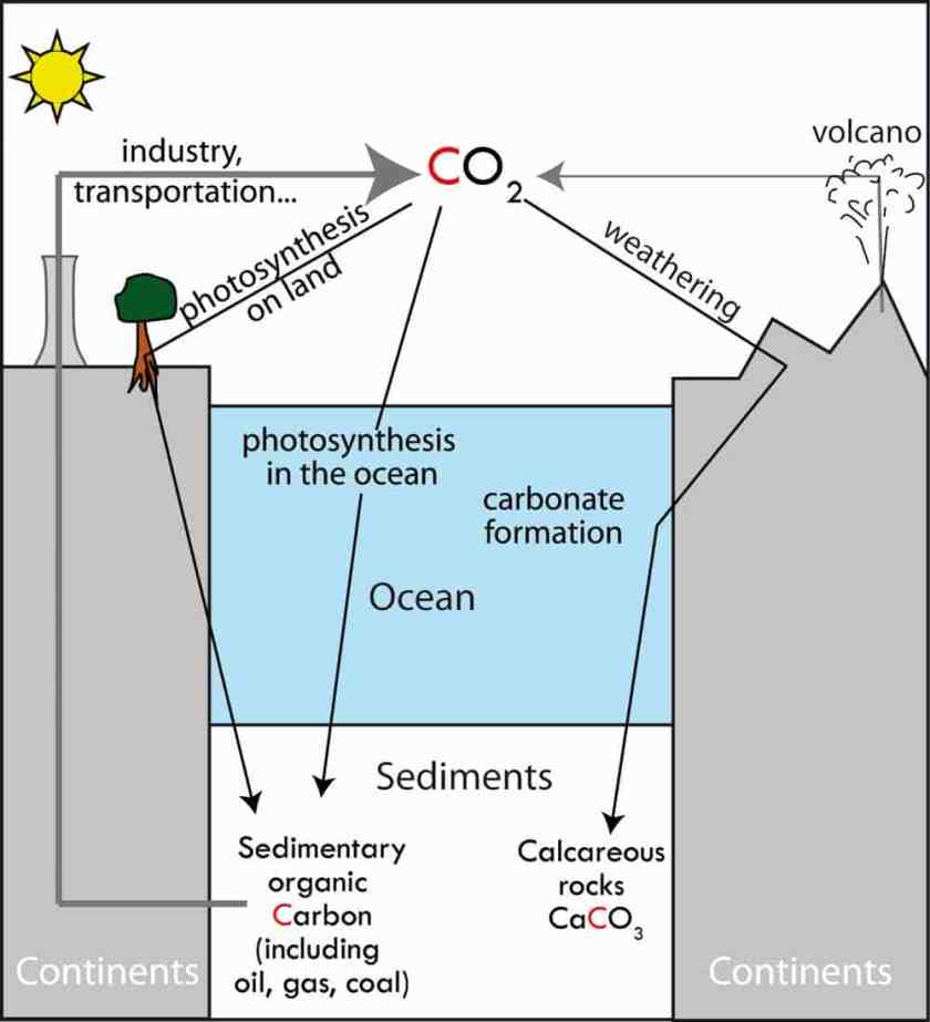 Simplified geological carbon cycle. The sinks (black) show the sedimentation of organic matter and the alteration-synthesis coupling of carbonate. They oppose (grey) sources: volcanoes for more than 4billion years and thermo-industrial human activities for 150years.G. Paris