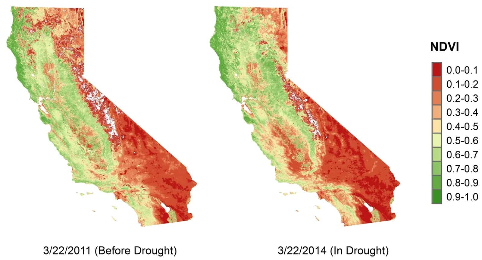 Normalized difference vegetation index satellite images of the state before and during the drought. | Image courtesy Chunyu Dong/UCLA.