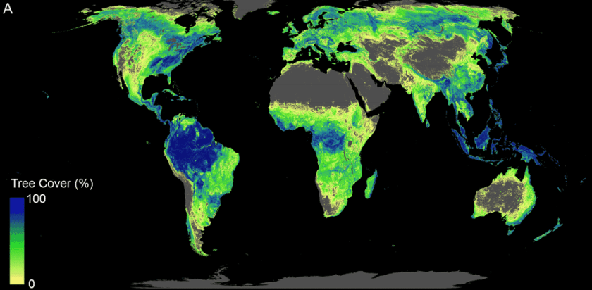 Researchers mapped out where the Earth currently and could potentially support 4.4 billion hectares of forest.  The gray areas represent surfaces of the Earth that cannot support tree growth such as deserts and densely developed areas.  Source: Bastin et al, 2019.