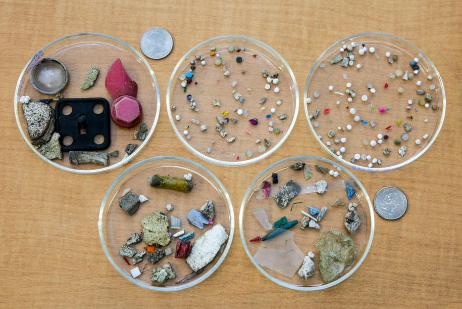 Various types and sizes of plastics collected from the Kinnickinnic River, Milwaukee, WI. Photo: S. Mason, State University of New York at Fredonia. Public domain. Source: USGS.