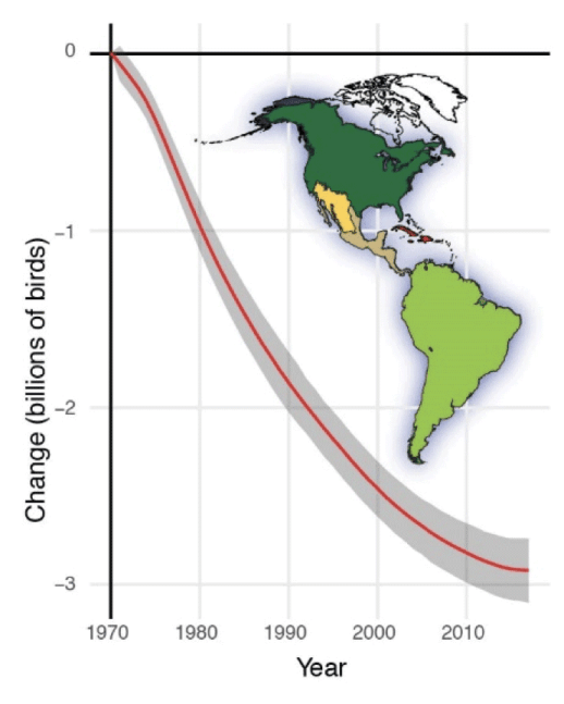 Net population change in North American migratory birds grouped by non-breeding biome.  Figure:  Rosenberg et al., 2019.