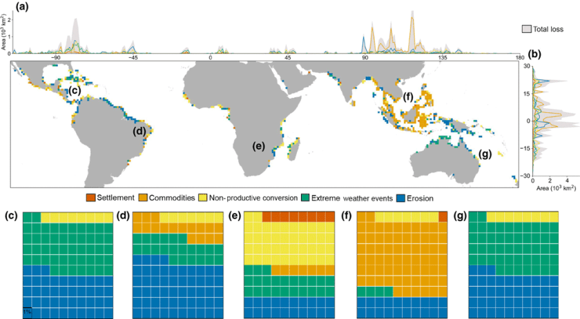 "Map and graphs showing global distribution of mangrove loss and its drivers.  From the study: ""(a) The longitudinal distribution of total mangrove loss and the relative contribution of its primary drivers. Different colors represent unique drivers of mangrove loss. (b) The latitudinal distribution of total mangrove loss and the relative contribution of its primary drivers. (c‐g) Global distribution of mangrove loss and associated drivers from 2000 to 2016 at 1°×1° resolution, with the relative contribution (percentage) of primary drivers per continent: (c) North America, (d) South America, (e) Africa, (f) Asia, (g) Australia together with Oceania."" Source: Goldberg et el., 2020.  CC BY 4.0"