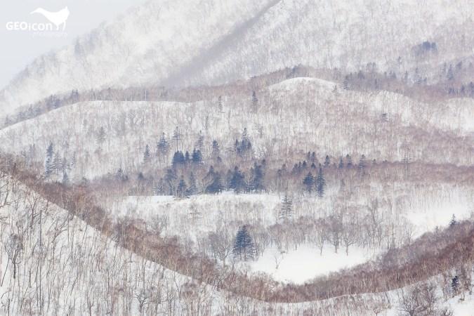 Hokkaido.