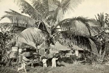 Native huts, Cataño.