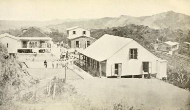 Coffee plantation in Lares.