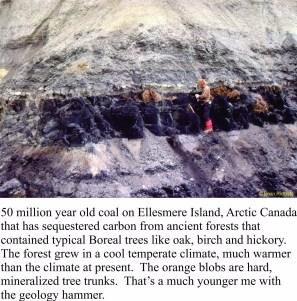 coal-strathcona-fiord
