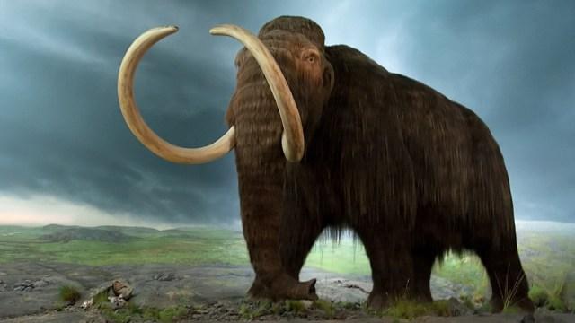 mammoth-GeologyPage