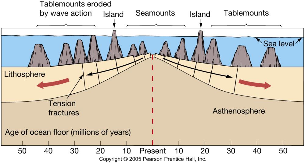 medium resolution of ocean floor diagram