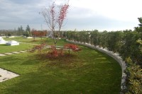Extensive roof garden with grass - Geoplast