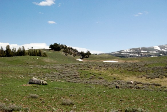 The Blacktail Plateau is capped by moraines of Deckard Flats age - 14.2 +- 10Be ka.