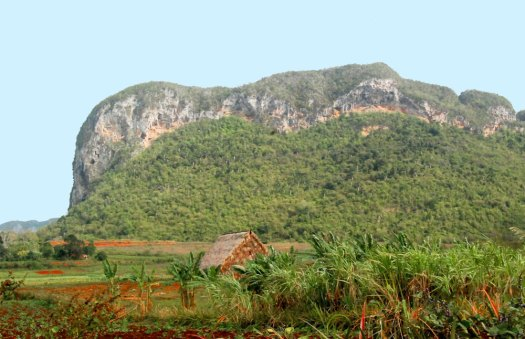 "One of the towering limestone hills locally known as ""mogotes"" of the Pinar del Río Province in far western Cuba. This mogote is known as Abra de Ancón and it is famous for the site where Manuel Fernández de Castro first found Jurassic marine invertebrate fossils in the late 1800's."