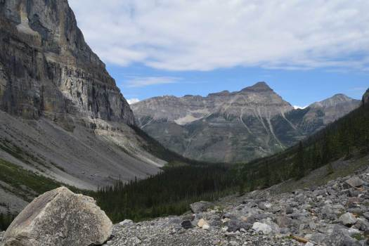 Stanley Glacier Valley, Kootenay National Park - the view is looking west from the upper talus slopes.