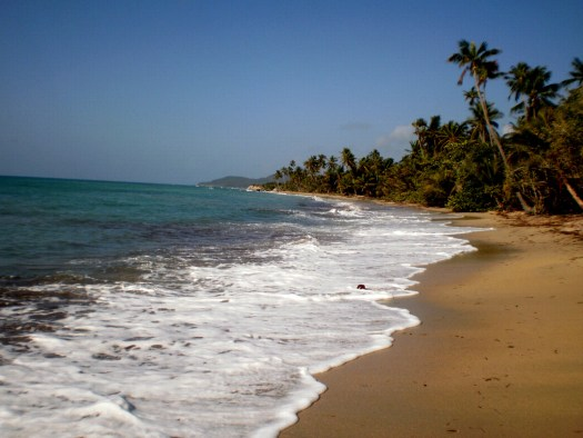 Coconut beach near Esperanza is well within walking distance from the local lodgings.