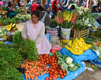 The Chinchero market, with a vendor selling produce and flowers.