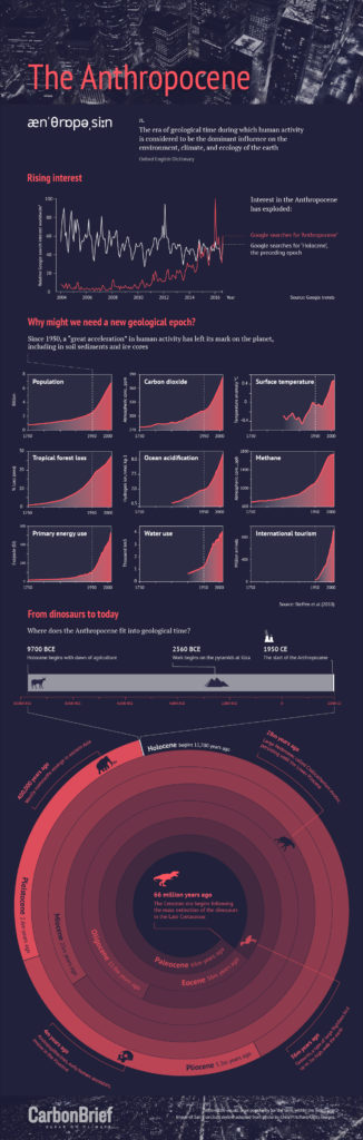 Infographic: The Anthropocene. By Rosamund Pearce for Carbon Brief.