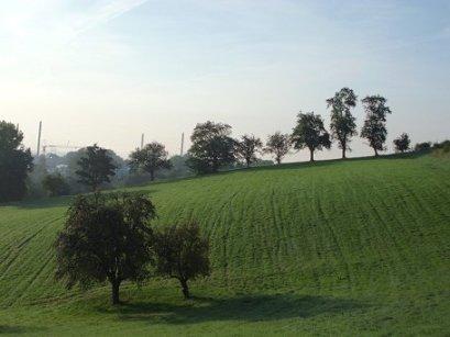 Linz hat viele Grünzonen (im Hintergrund die Gugl)