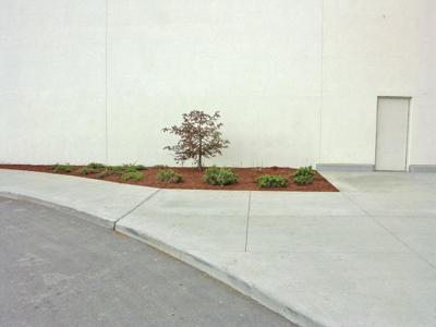 mall wall 1
