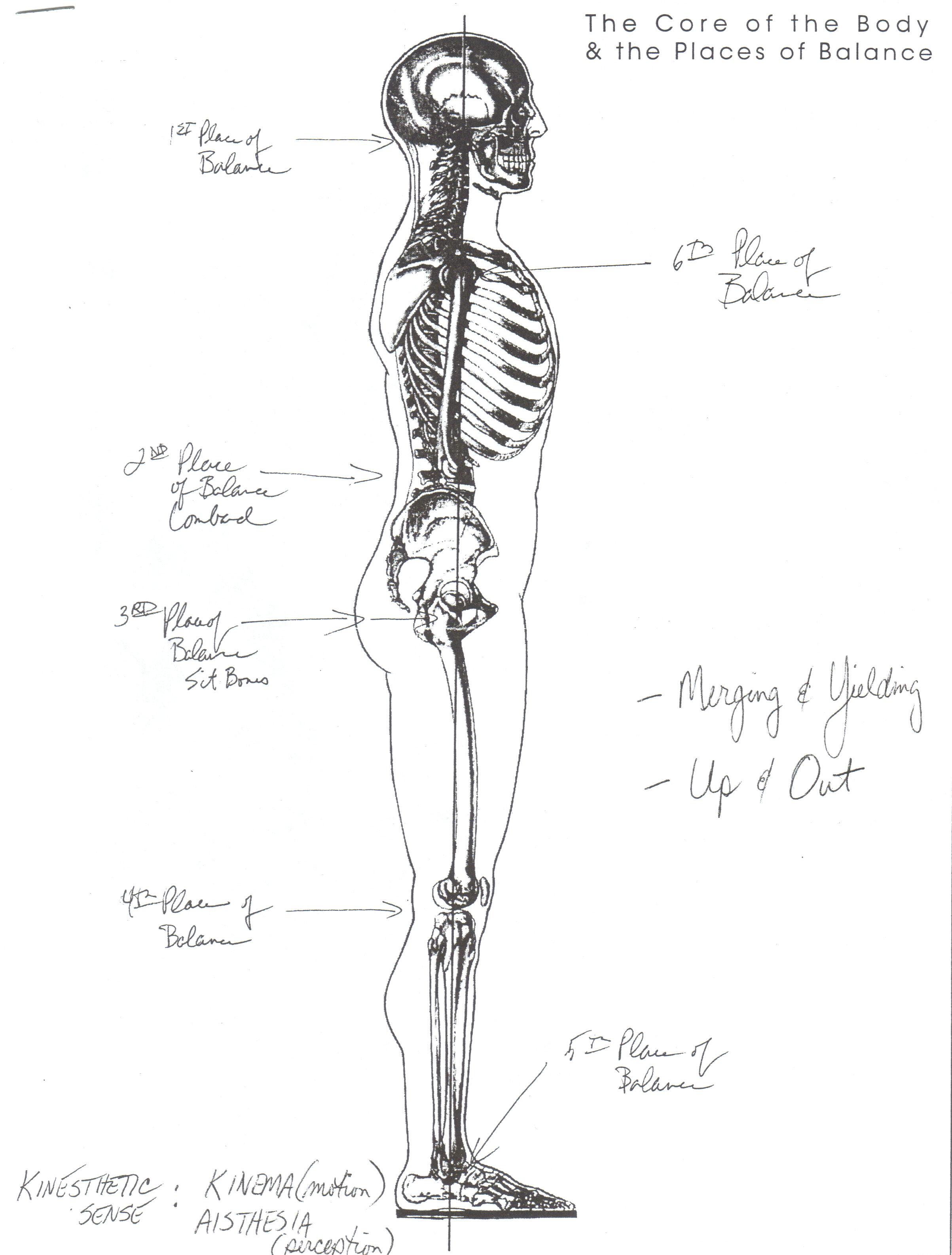 Body Alignment George Corbett