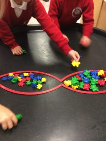 Sorting the bears into groups