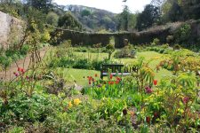 Walled Garden at Hartland Abbey, May 2013