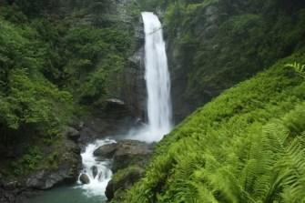 Lagodekhi National Reserve 5