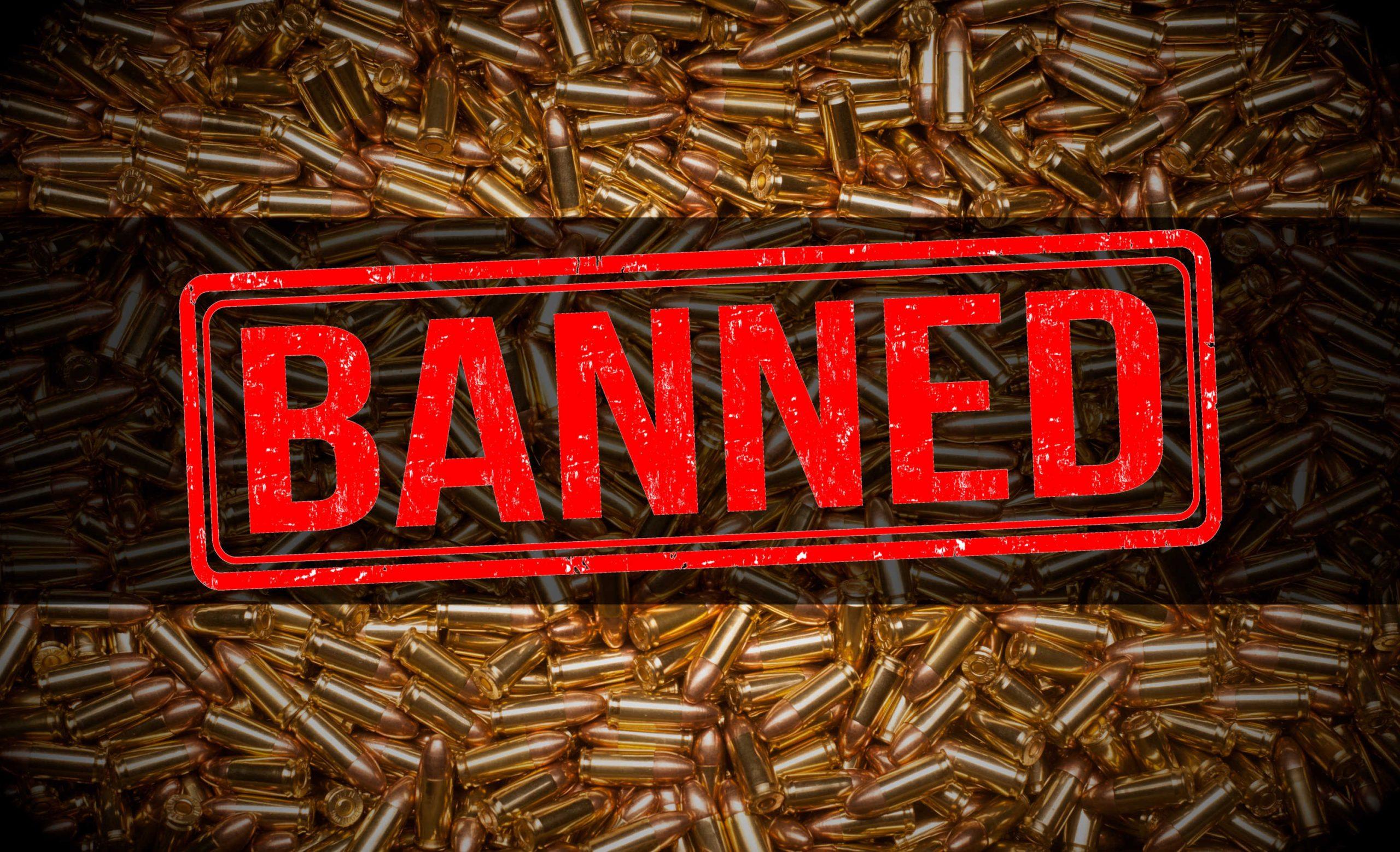 Pelosi's Ammo Ban Would CRIPPLE Gun Owners!