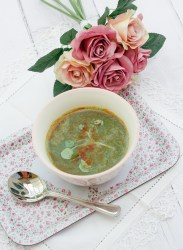 Spiced-Watercress-Soup-for-Gerd-and-Gastroparesis-vegan-Dairy-Free-Gluten-Free-scleroderma