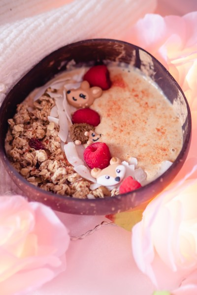 pumpkin pie smoothie bowl low fodmap for gerd and gastroparesis