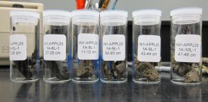 Samples in vials