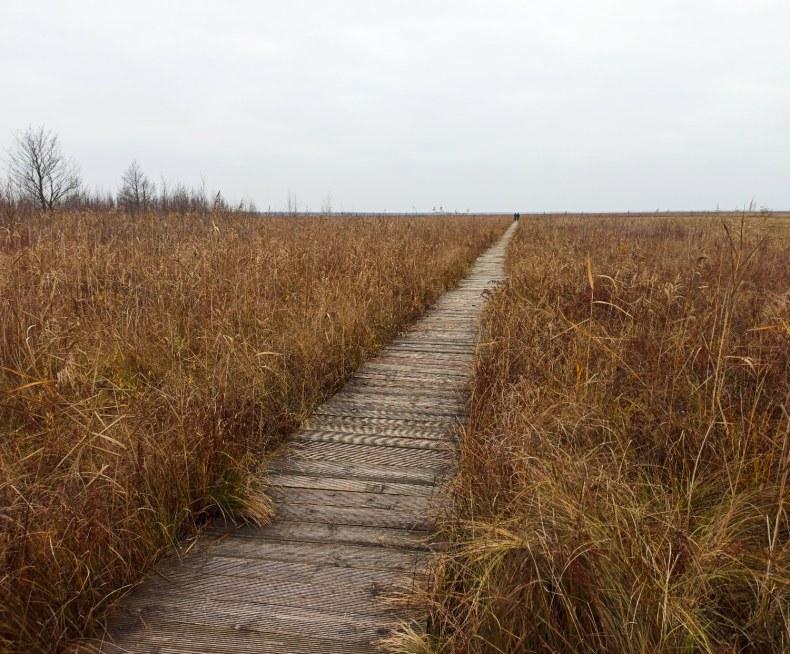 Ścieżka Długa Luka