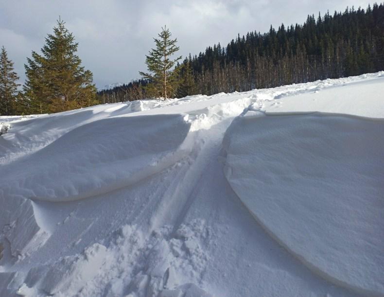 deska śnieżna - zimowy kurs turystyki wysokogórskiej