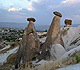 Full Day Cappadocia Tour A (Daily)