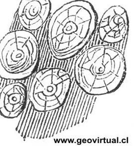 Rocas Intrusivas o rocas plutónicas