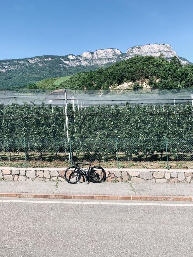 Meran, Südtirol, Specialized, Weinstraße, Obstgärten