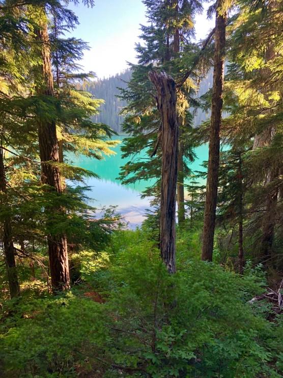 Lower Lake_0245