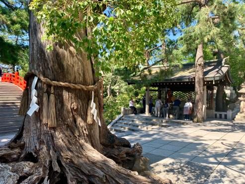 Sumiyoshi Temple_0510