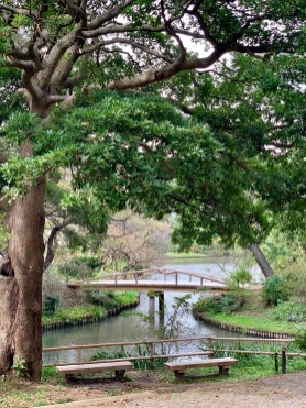 Sankeien Gardens_1072