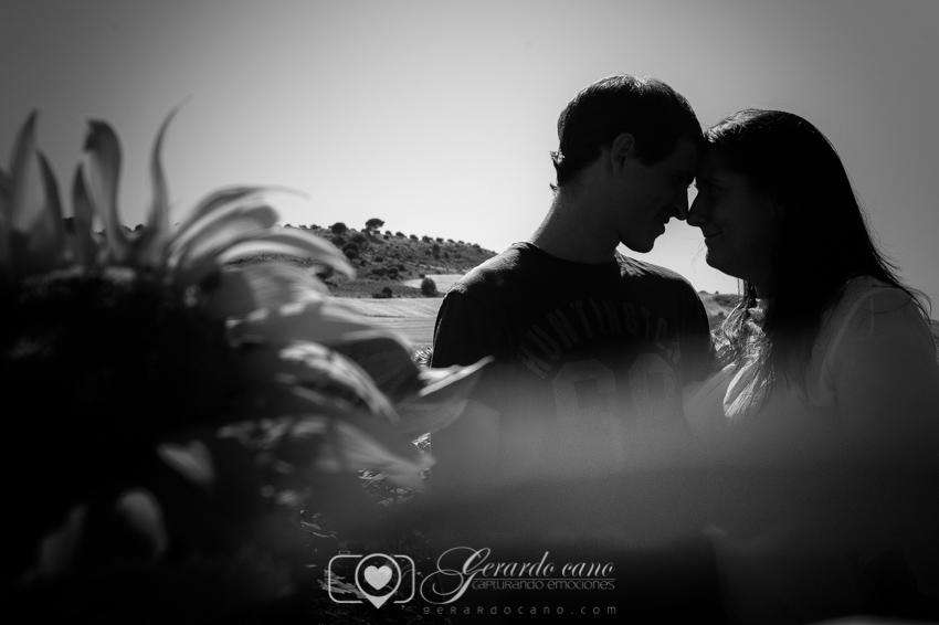 Fotos de Boda Cuenca: Sesión de pre-boda con girasoles en Cuenca (40)