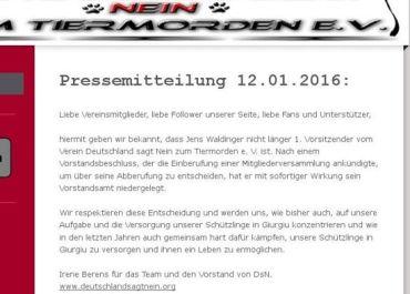 Screenshot: Pressemitteilung von DsN
