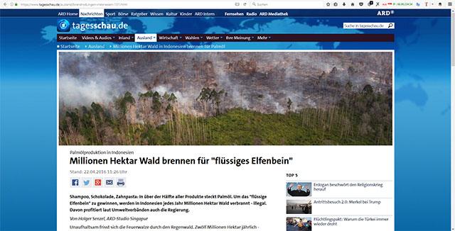 Screenshot ARD Beitrag zum Thema Palmöl Abzurufen unter https://www.tagesschau.de/ausland/brandrodungen-indonesien-101.html