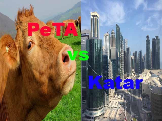 PeTA vs. Katar
