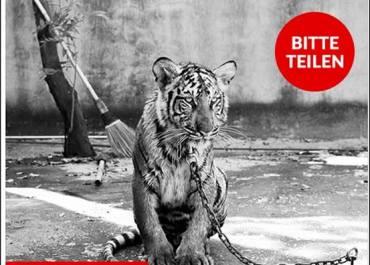 Tierschutz-Shop stellt mit Clickbait falsche Tatsachenbehauptungen auf und will diese als Wahr verkaufen