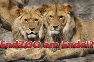 Die EndZOO - Frank Albrecht Story (1)
