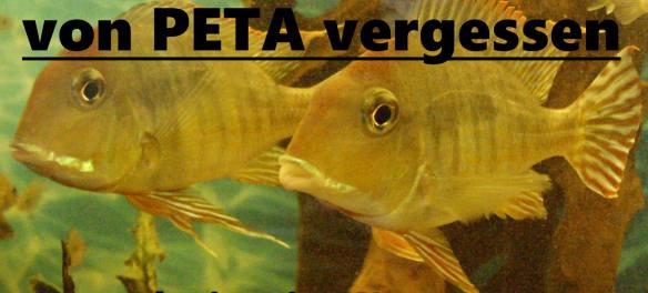 PeTA akzeptiert Tierversuche