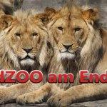 EndZoo ist Tod (5)